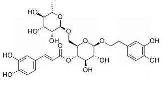 Forsythoside A