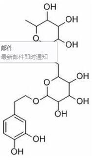 Forsythoside E