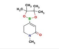 1-methyl-5,6-dihydropyridinone-4-boronic acid pinacol ester