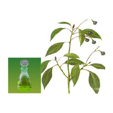 brown camphor oil manufacturer for agriculture farming camphor oil