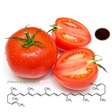 Natural Lycopene Extract 5%, 10%,20% Lycopene Test by HPLC