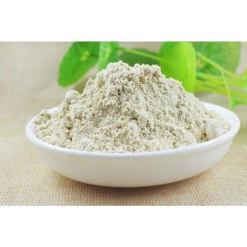 Glycyrrhiza glabra - Licorice / Licorice