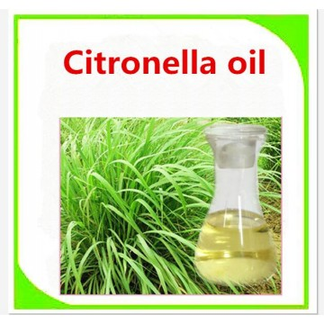 Manufacturer supply natural citronella essential oil bulk sale with best price