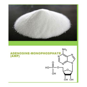 Adenosine Monophosphate (AMP)