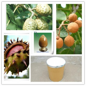 20% Aescins Test by HPLC Horse Chestnut Extract