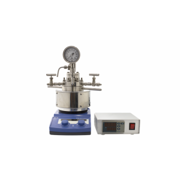 Micro Magnetic Stirred High Pressure Reactor