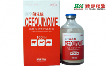 2.5% Cefquinome Sulfate Injection