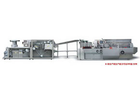 DPP-260D/ZHJ-260D Roller Plate Blister and Cartoning Production Line