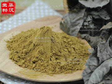 Mulberry Leaf Extract DNJ