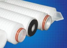 DLM Series-PTFE Pleated Filter Cartridge