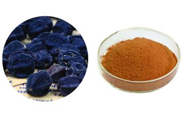 Acanthopanax Senticosus Extract