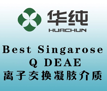 Best Singarose Q DEAE