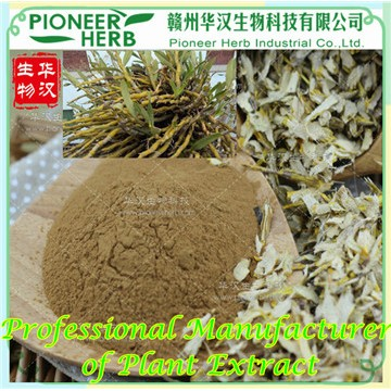 Dendrobium Total Alkoloids, Dendrobium Extract