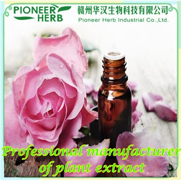 Rose essential oil, Rose flower essential oil