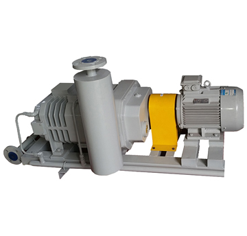 DP-type Oil-free Dry Screw Vacuum Pump
