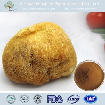 Hericium erinaceus Beta 1,3/1,6 D glucan