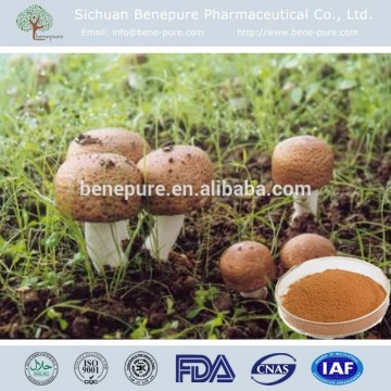 Agaricus blazei polysaccharide Fungi Extract