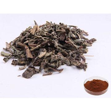 Baijiang Extract
