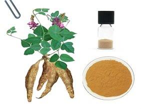 Kudzu Extract