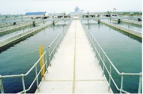 Heavy metal wastewater treatment special resin