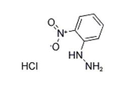 2-Nitrophenylhydrazine Hydrochloride