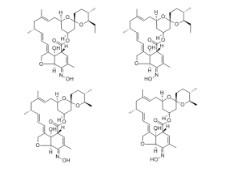Milbemycin Oxime