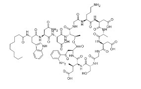 Daptomycin