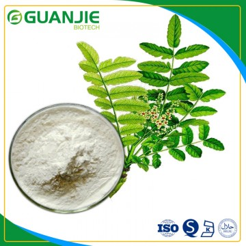Frankincense extract /Boswelia Serrata Extract good quality and competitive price