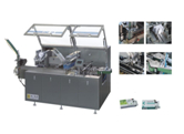 XWZ-120 Horizontal Type Cartoning Machine