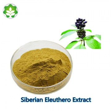 natural treatment for anxiety siberian eleuthero extract powder