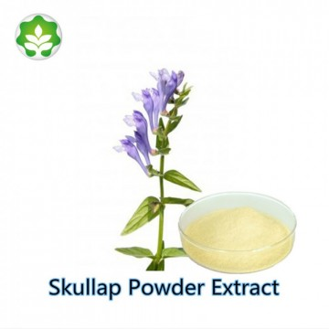 anti-allergic chinese herb skullcap extracted