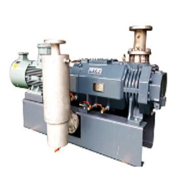 RMV dry variable pitch screw vacuum pump