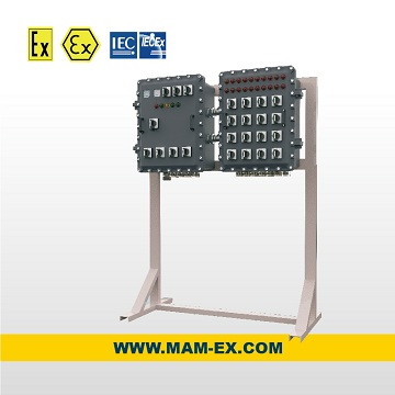 MAMX02 Series explosion proof electric control box
