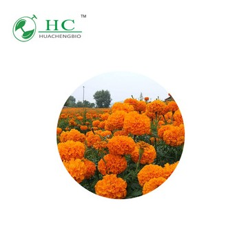 High Quality Marigold Extraction Lutein Powder