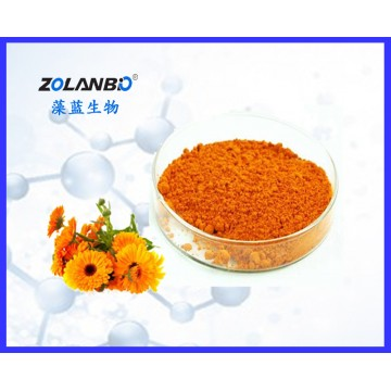 High Purity Lutein