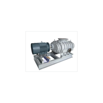 ZJQ2500 Series Air-cooling Roots Vacuum Pump