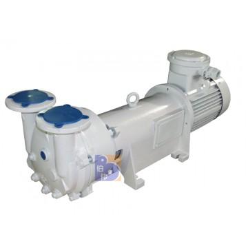 2 BV6121 water ring vacuum pump