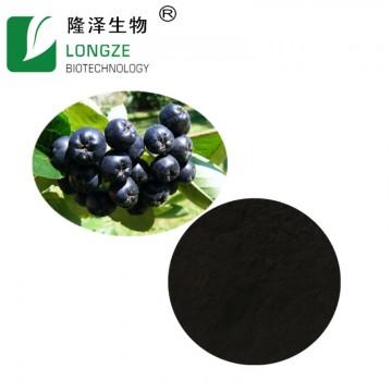 Chokeberry Extract Powder