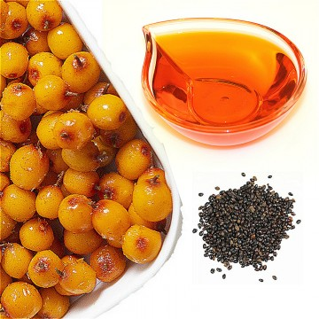 Sea Buckthorn Seed Oil Supercritical CO2 Extract