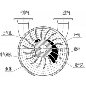 Liquid Ring Pump Schematic