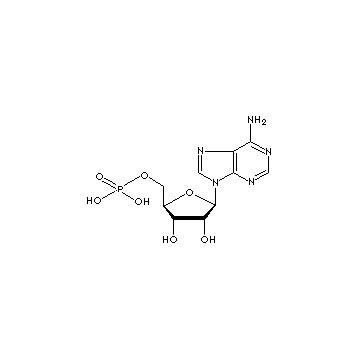 Adenosine-5´-monophosphate Acid