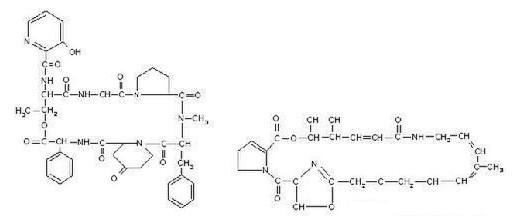Virginiamycin