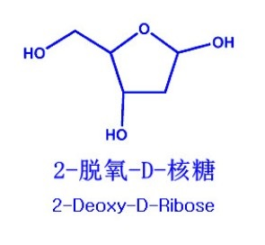 2-Deoxy-D-Ribose