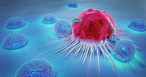 2019 China Cancer Immunotherapy Workshop Successfully Held