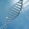 A New Favorite in the Medical World: Epigenetic Drugs